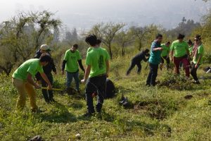 Voluntaria Vive Tus Parques 5